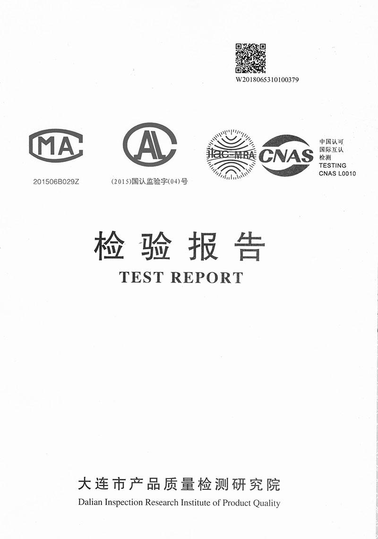 15YCB9F-100+ZV-2P-1委托报告