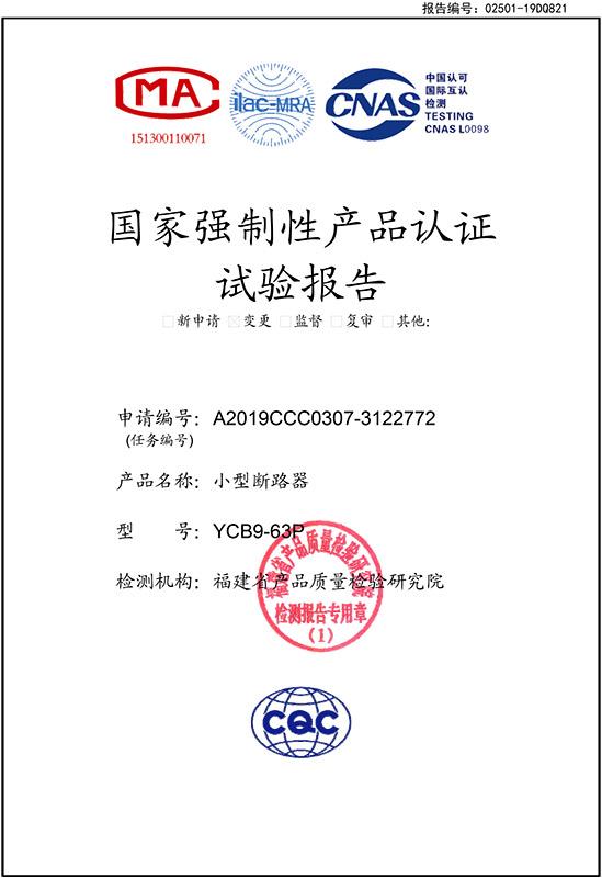 YCB9-63P实验报告