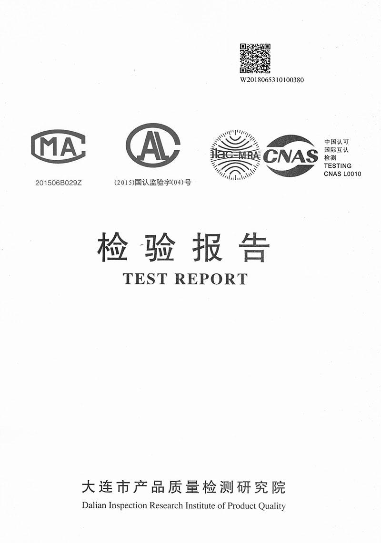 16YCB9F-100+ZV-4P-1委托报告